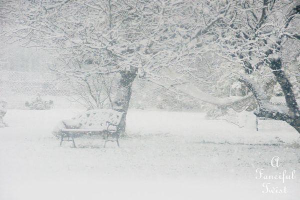 Snow fall 9