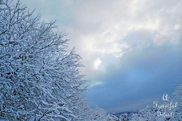 Snow fall 17