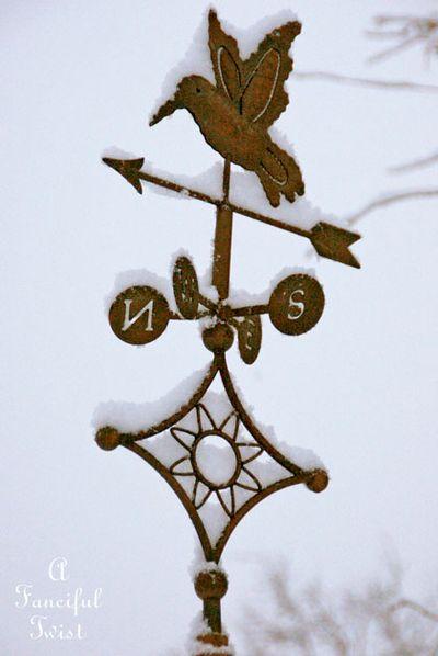 Snow fall 6