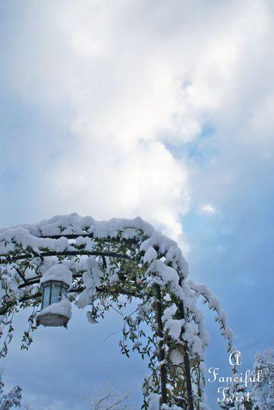 Snow fall 19