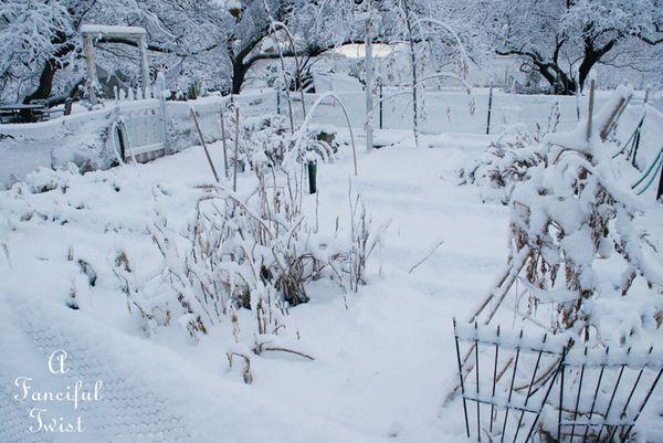 Snow fall 20