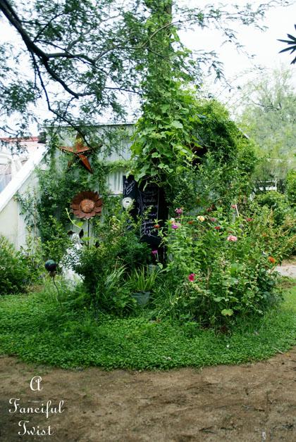 Garden collecting 15
