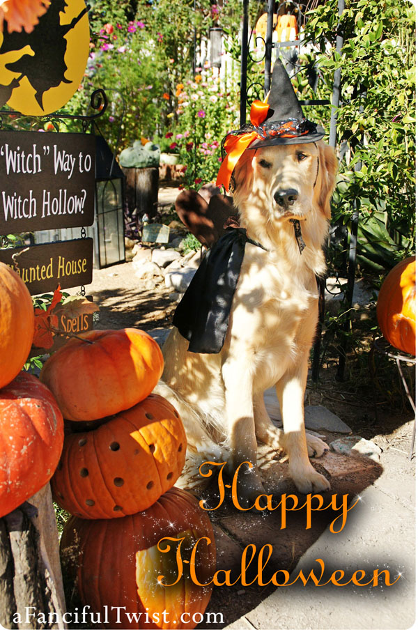 golden retriever halloween front etsy