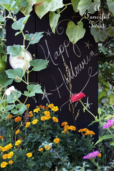 October flowers 6