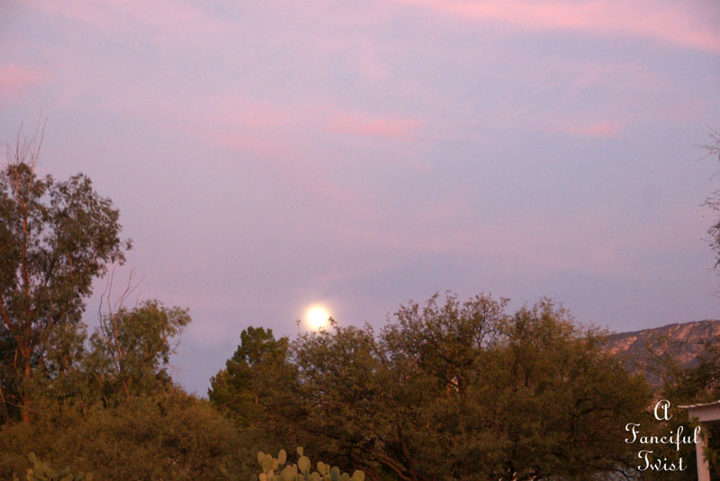 Pink and purple moon sky 2