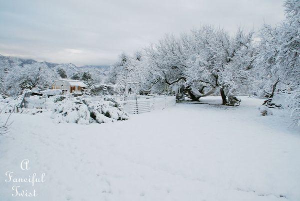 Snow fall 21