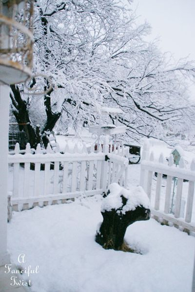 Snow fall 23