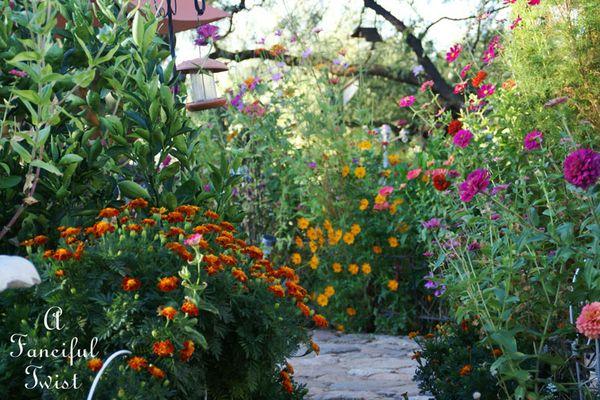 October flowers 4