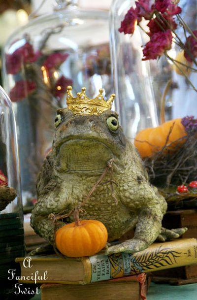 Frog prince 6 a