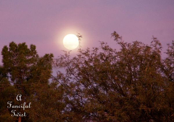 Pink and purple moon sky 1