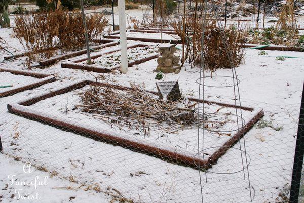 Snow dogs 16