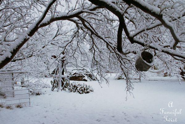 Snow fall 29