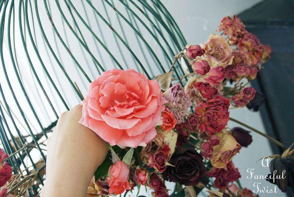 Flower power 6