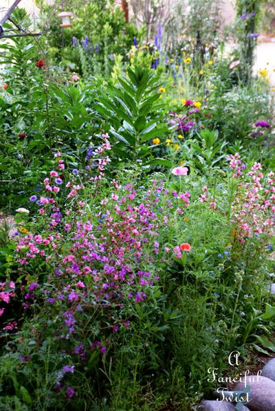 Growing garden 3