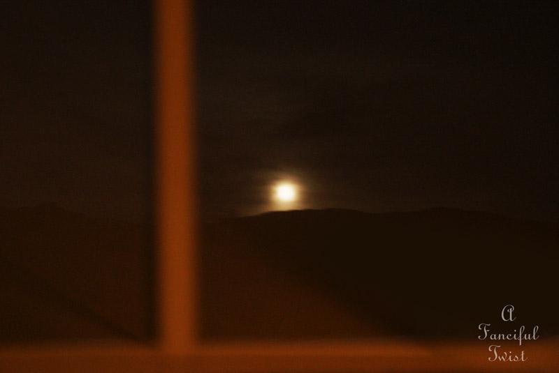Moonlight 12