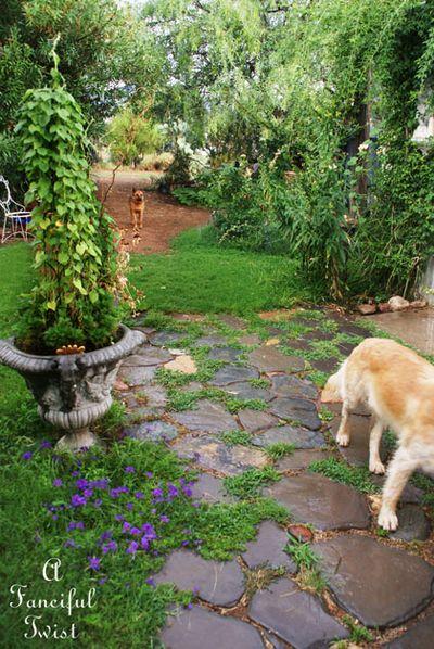 Garden rain 30
