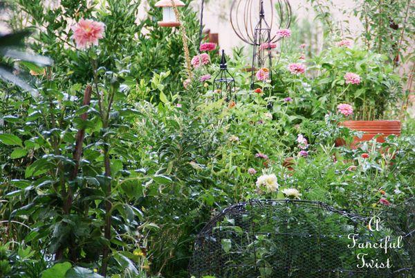 Garden rain 27