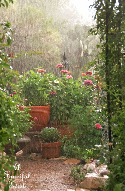 Garden rain 29