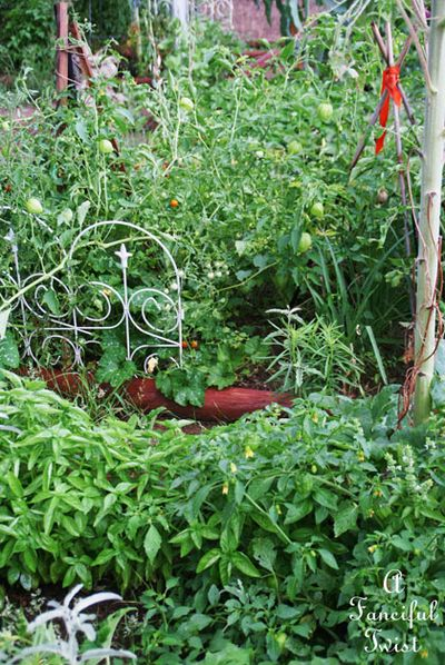 Garden rain 40