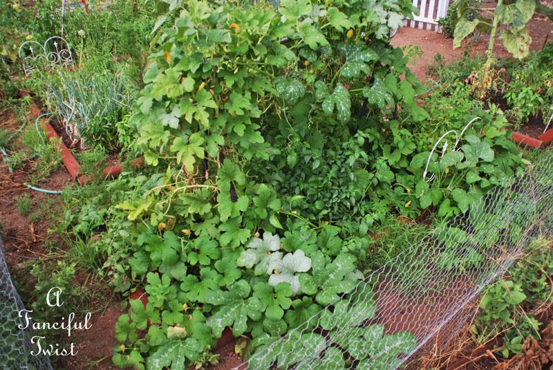 Garden rain 9