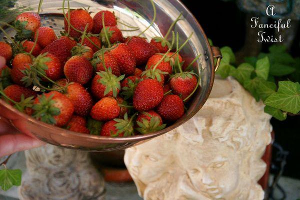 Berries and cream 3