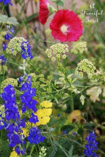 Growing garden 37