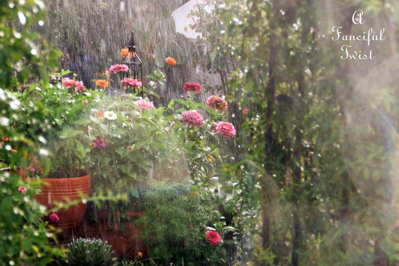 Garden rain 23