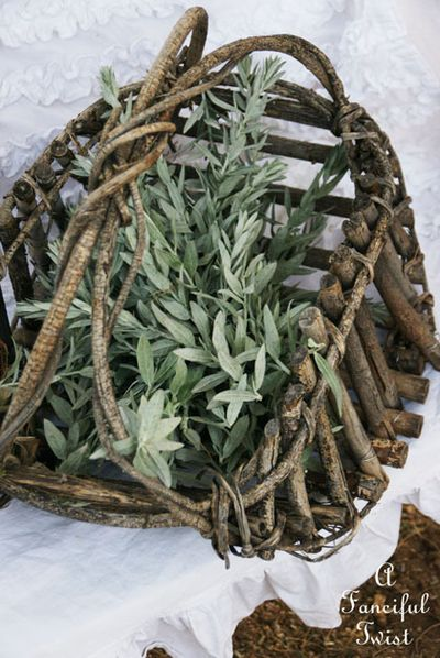 Collecting sage 3