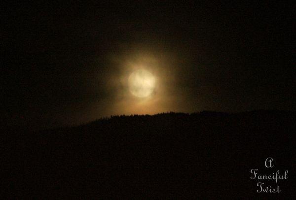 Moonlight 11