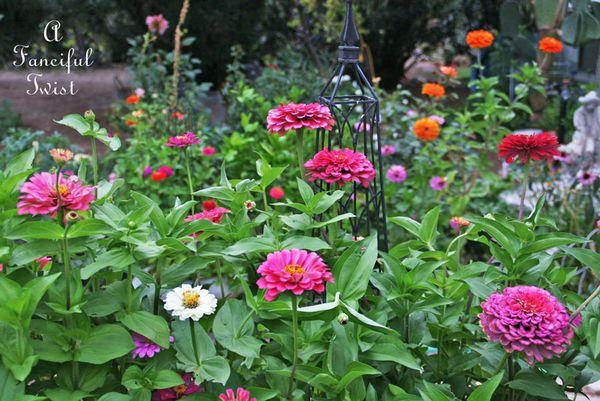 Garden rain 49