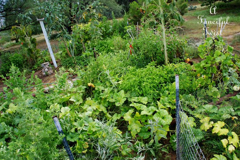 Garden change 5