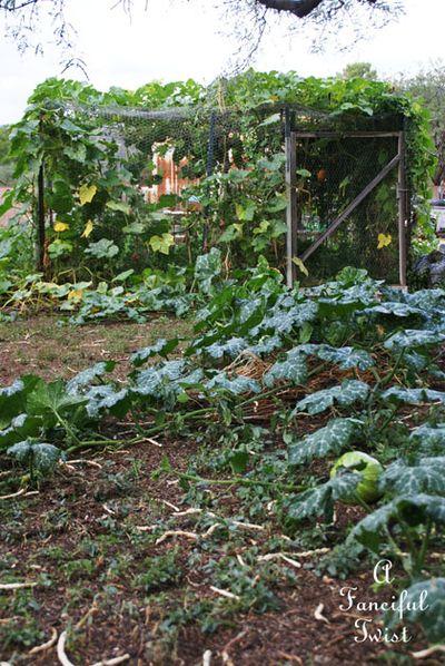 Garden change 12