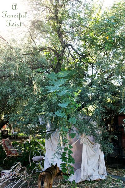 Wishing tree 1