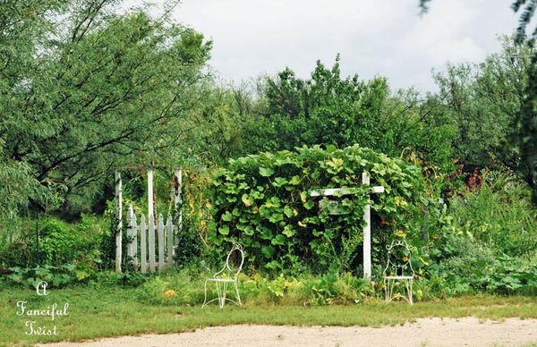 September garden 1