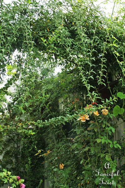 September garden 39