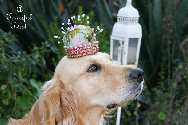 Princess pincushion 18