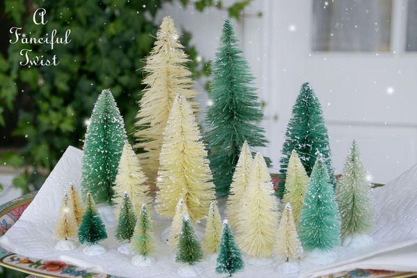 Bottle brush trees 1