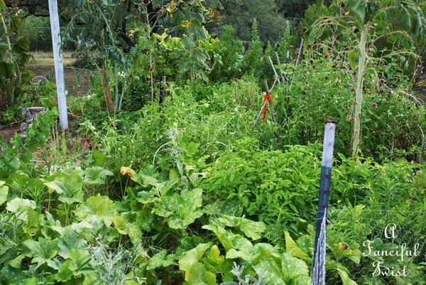 Garden change 7