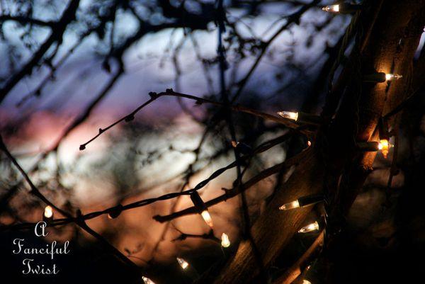 Evening 17