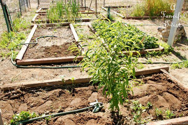 Garden ready 1