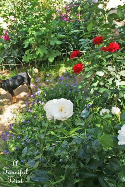 Garden ready 36