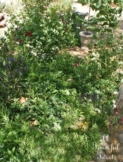 Garden ready 35