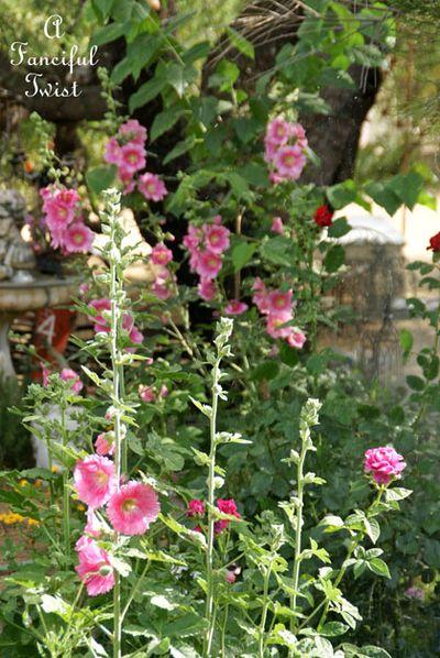 Vanessa valencia garden 8
