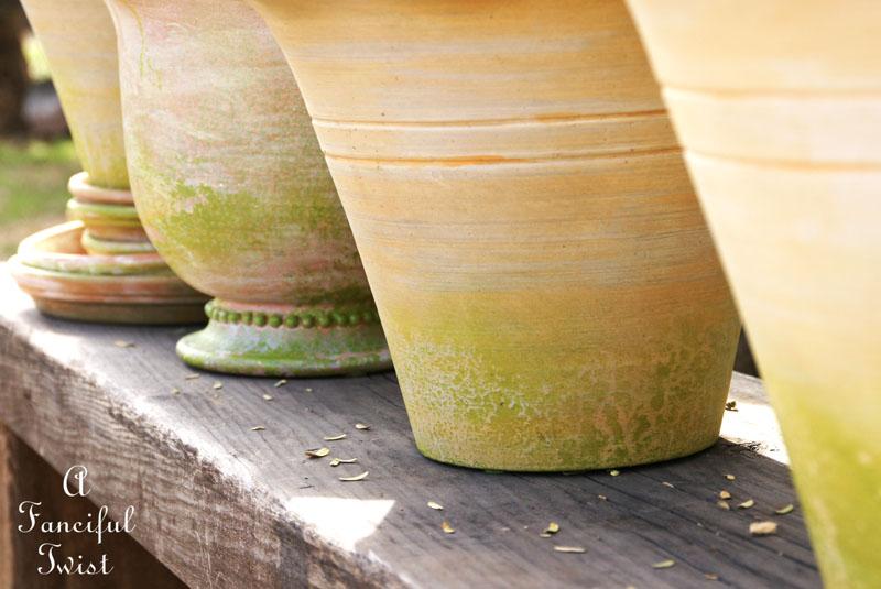 Mossy terracota pots 2