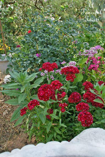 Garden ready 16