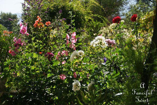 In the garden 7