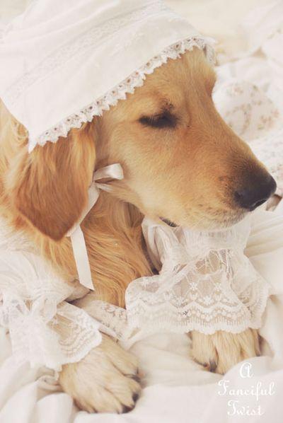 Nanny buttoncap 6