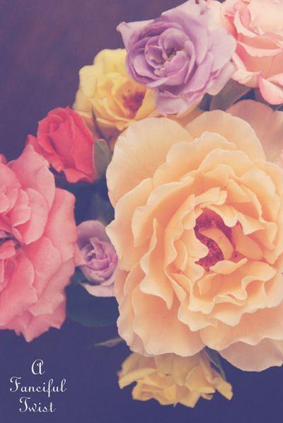 Fading flowers 1