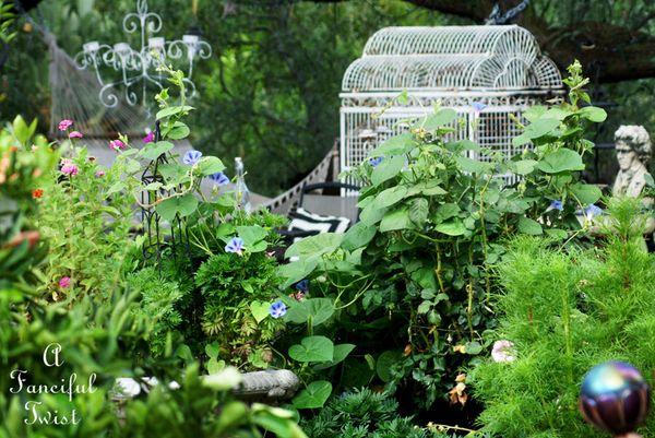 August garden 17