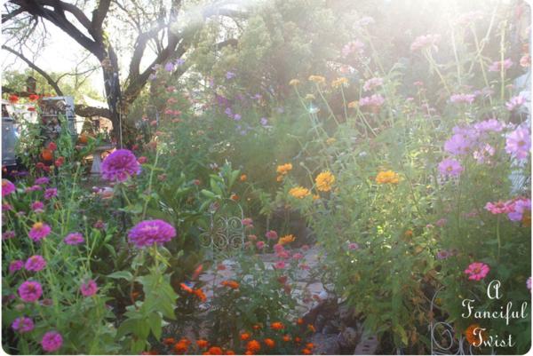 In the garden 30